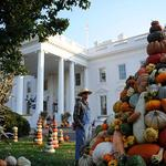 Don't let October 31st become a Halloween drama